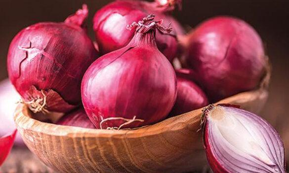 Fresh-Onion